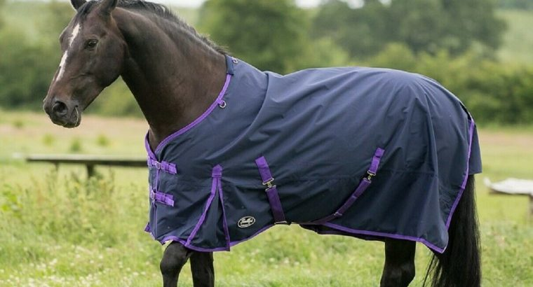 Gallop Trojan Lite Weight No Fill 0g Fill Waterproof Horse Turnout Rug No Neck
