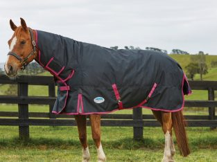 WeatherBeeta ComFiTec Premier Free 360g Heavyweight Combo Turnout Rug Black/Boysenberry