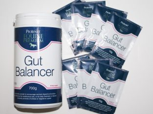 Protexin Gut Balancer 700g + 7 FREE 10g sachets (10% extra free)