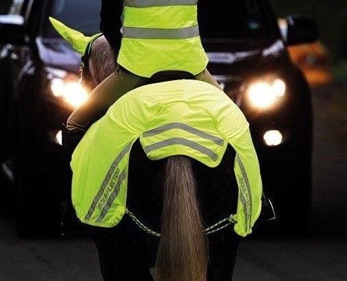 Shires Equi-Flector Horse Hi-Viz Reflective Mesh Very Breathable Exercise Sheet