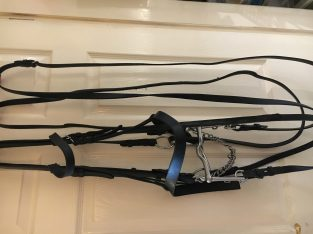 Double bridle. Full size. Black leather