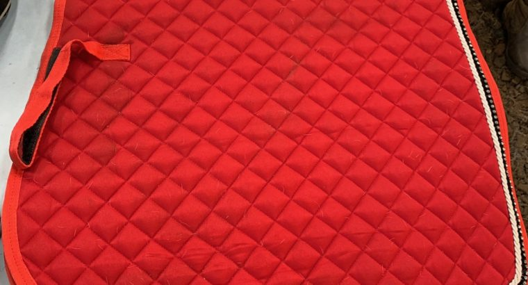 Red saddle Pad, Crop and Fly Veil